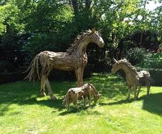 Suppliers of an exceptional driftwood horse, driftwood horse heads plus other driftwood sculptures and furniture. Driftwood Sculpture, Horse Sculpture, Animal Sculptures, Driftwood Furniture, Tree Roots, Animal Heads, Outdoor Settings, Horse Head, Quotation