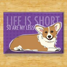 Corgi Magnet Life is Short So Are My Legs Tri Color by PopDoggie