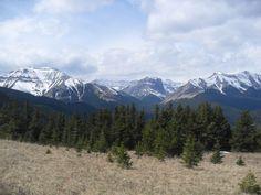 Mt Hoffmann hike