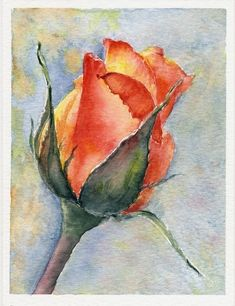 Watercolor Paintings For Beginners, Watercolor Video, Watercolor Rose, Watercolor Cards, Watercolor Print, Watercolour Painting, Watercolors, Art Floral, Art Sur Toile