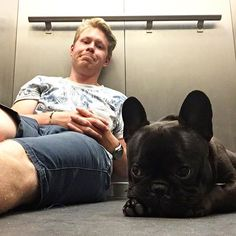 """""""Got stuck in the elevator with dad last night. We had a great time. Until someone farted... but it wasn't me!"""" Zorro, the French Bulldog, @zorrolefrenchbulldog on instagram #wasntme #imbackinaweek #zorrolefrenchbulldog #frenchbulldog #frenchie #bulldog #fralla #frogdog #batpig #adorabull #dogsofinstagram #bulldogsofinstagram #dogs #puppy #bullylove #instabulldog #frenchiesofinstagram #franskbulldog #frenchies1 #ig_bullys #bullyinstafeature"""