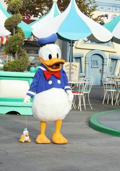 Donald Duck Face Character