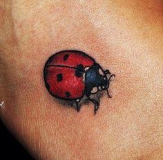 Ladybird tattoo #instagram