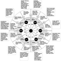 In Traditional Chinese Medicine it is believed that each organ has its point of highest energy and lowest energy. This 24 hour cycle is believed to help us know when to exercise, eat, have sex, rest and sleep. It also acts as a way to communicate with a particular organ or meridian (energy channel) of …