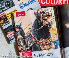 Maximilian Weinzierl – Fotografie und viel mehr: Bewegung im ColorFoto 7-8/2020 Maximilian, Video Game, Cover, Artwork, Photos, Candid Photography, Regensburg, Animals