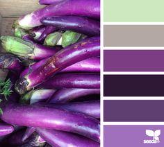 Aubergine Hues Farbstreifen, Wandfarbe Farbtöne, Farbmuster,  Farbgestaltung, Farbenspiel, Farbkombinationen, Farbpalette