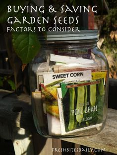 Buying and saving garden seed: Factors to consider