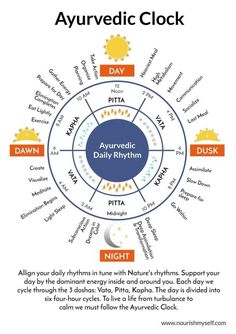 ayurveda clock: I don't know about the whole ayurveda thing but this daily life rhythm makes a lot of sense. ayurveda clock: I don't know about the whole ayurveda thing but this daily life rhythm makes a lot of sense. Ayurvedic Healing, Ayurvedic Diet, Ayurvedic Recipes, Ayurvedic Medicine, Holistic Healing, Holistic Medicine, Ayurvedic Therapy, Ayurveda Massage, Massage Therapy