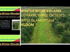 Swansea Winter Wonderland