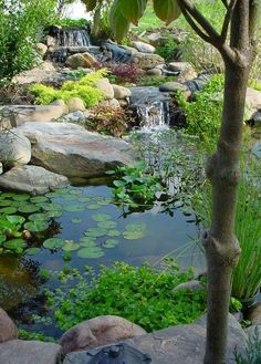 10 Worthy Tips AND Tricks: English Backyard Garden Outdoor Spaces backyard garden layout ideas.Backyard Garden Design How To Make backyard garden pool water features. Pond Landscaping, Ponds Backyard, Garden Ponds, Koi Ponds, Backyard Ideas, Modern Backyard, Diy Garden, Garden Stream, Backyard Waterfalls