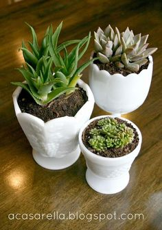 {DIY} Thrifted Milk Glass (Succulent Planters!)