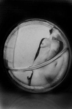 Kate Polin