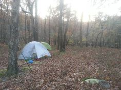 Alabama's Pinhoti trail. Camp life.