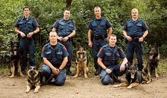 major the k9 cop | Medicine Hat Police Service - K-9 Unit