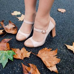 Meu Deus,eu preciso colocar os meus pés nesses sapatos!!!