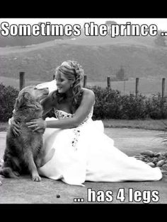 The ONLY Prince that I want is 4 legged!!