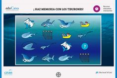 Haz memoria con los tiburones