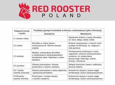 Jak chronić wciągniki pnaumatyczne przed korozją? Odwiedź stronę Red Rooster Poland!