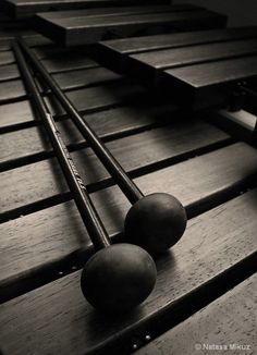♫♪ Music ♪♫ instrument black & white X - xylophone...for music