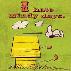 Wednesday afternoon with Snoopy.