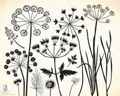 Wild herbs, wildflowers, plants, flora, silhouette, vector clip ...