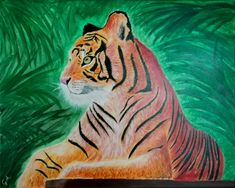 #tiger #acril #painting