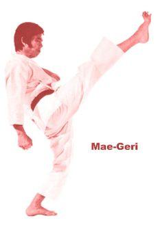 Mae-Geri