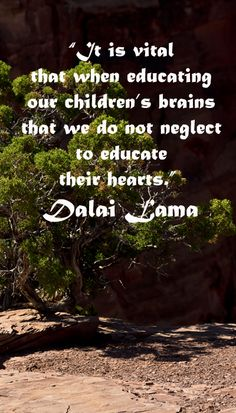 """Click To LearnWill 2017 Be Your BIG Year? """"It is vital that when educating our children's brains that we do not neglect to educate their hearts."""" Dalai Lama -- Build your child's naturalist intelligence with unique nature. Drive up Mt. Lemmon in Tucson, Arizona, to travel through microclimates zones analogous to travel from Mexico to Canada! Get travel tips at www.examiner.com/..."""
