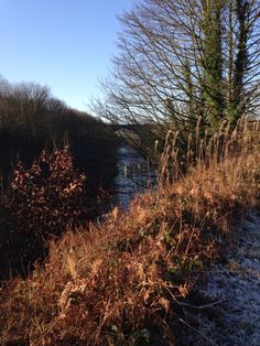 28/12/14 Drinkwater Park through to Clifton Country Park 6.5 miles
