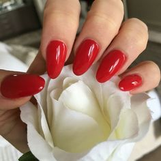 nice Red acrylic, gel / shellac, chic, almond shape nails, simple, classic style...