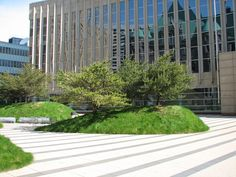 The Federal Courthouse Plaza by Martha Schwartz