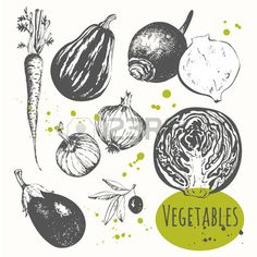 Fresh Organic Food. Vector Illustration With Sketch Vegetable... Royalty Free Cliparts, Vectors, And Stock Illustration. Image 48480479.