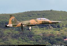 Northrop (AIDC) F-5F Tiger II aircraft picture
