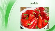 The Creator, Stuffed Peppers, Make It Yourself, Vegetables, Food, Youtube, Stuffed Pepper, Essen, Vegetable Recipes