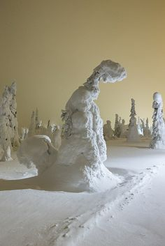~~Snow Squirrel ~ snow laden trees, Iso Syote, Finland by Oliver C Wright~~ Love the colour of the sky I Love Snow, Snow Fun, Winter Snow, Winter White, Belle Image Nature, Snow Sculptures, Winter Scenery, Snow Scenes, Winter Beauty