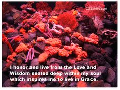 """""""I honor and live from the Love and Wisdom seated deep within my soul which inspires me to live in Grace.""""  