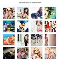 Flickr Album Gallery WordPress Plugin