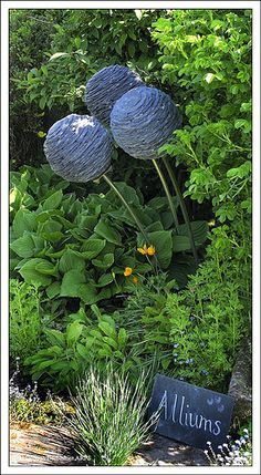 Slate Alliums By Joe Smith by Duncan Darbishire, via Flickr
