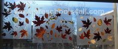Fall leaf collecting craft with contact paper