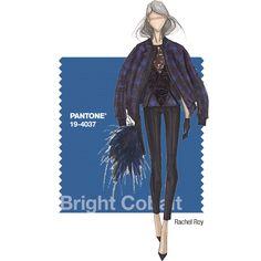 PANTONE Fashion Color Report Fall 2014 –Bright Cobalt –Rachel Roy