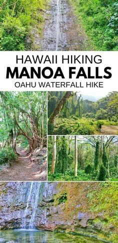 Hawaii vacation ideas with Oahu Hawaii travel tips with waterfalls and hikes. best things to do in hawaii. best waterfalls on Oahu. Hawaii Travel Guide, Europe Travel Tips, Italy Travel, Travel Guides, Oahu Vacation, Vacation Ideas, Vacation Pictures, Vacation Outfits, Manoa Falls Oahu