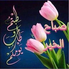 Good Morning Beautiful Flowers, Beautiful Morning Messages, Good Morning Images Flowers, Good Day Quotes, Good Morning Quotes, Good Morning Arabic, Ramadan Images, Chocolate Cosmos, Islamic Images