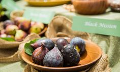 Home & Family - Tips & Products - All About Figs with Shirley Bovshow | Hallmark Channel  7/3