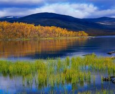 Ruska/Autumn colours at Lake Inari, Finland Lappland, Helsinki, Finland Summer, Autumn Leaf Color, Autumn Colours, Lapland Finland, Summer Landscape, Landscape Design, Beautiful Landscapes