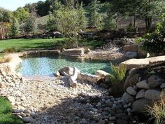 Natural Swimming Pool / Pond - love the shape and size - definitely want white sand on bottom with flagstone with beach entry