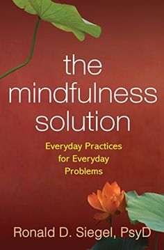 The Mindfulness Solution: Everyday Practices for Everyday Problems by Ronald D. Siegel http://www.amazon.com/dp/1606232940/ref=cm_sw_r_pi_dp_p9I2wb0VEXXNG