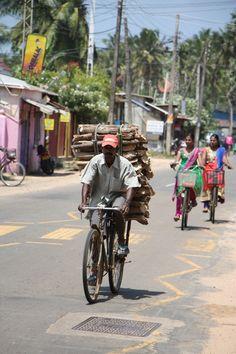 wood biking