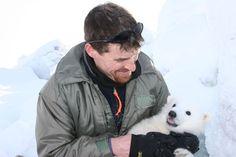 El oso polar podría no adaptarse a un Ártico sin hielo