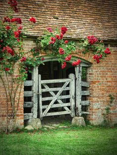 red roses on a brick barn