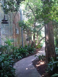 Explore the alleyways of the historic downtown Charleston, SC! #perfectphotoopportunity #hiddenwonders